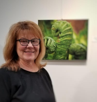 New Exhibits Open in PWPL Galleries